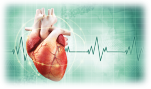 best cardiology hospital in india